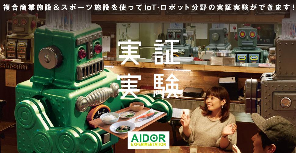 AIDOR エクスペリメンテーション